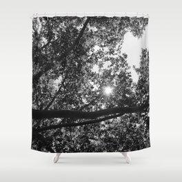 .Choco Le Fou. Shower Curtain