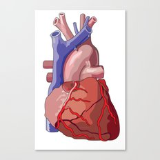 Vector Heart Canvas Print