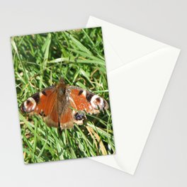 Peacock Butterfly Stationery Cards