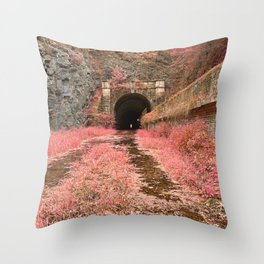 Paw Paw Tunnel - Pink Netherworld Throw Pillow
