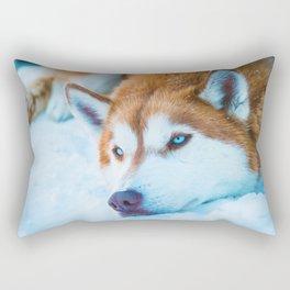 Sleepy Orange Siberian Husky (Color) Rectangular Pillow