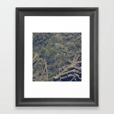 Underwater 03 Framed Art Print