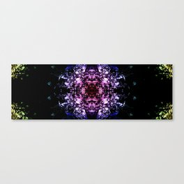 kaleidoscope4 Canvas Print