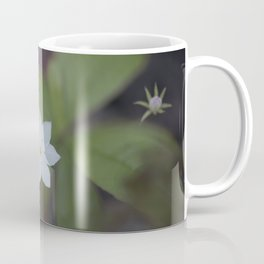 Starflower and bud Coffee Mug