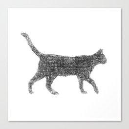 Dust kitten Canvas Print