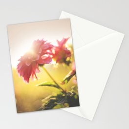 Morning Flowers Stationery Cards