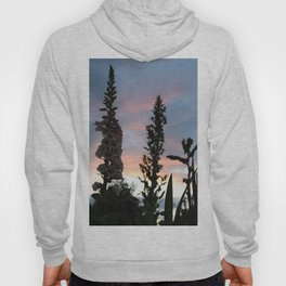 Mother nature is glorious. Hoody
