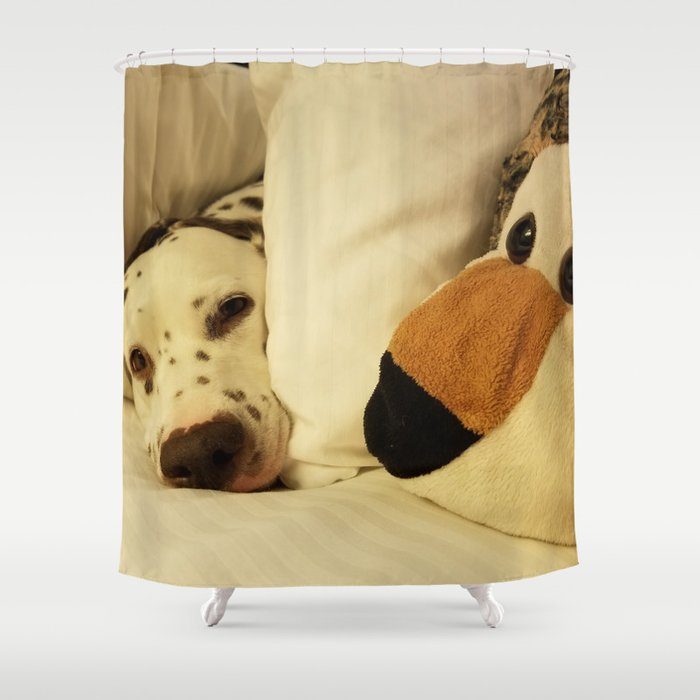 Dalmatian Tiger Nap Shower Curtain