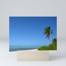 Crystal Clear Day on the Beach Mini Art Print