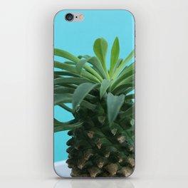 Euphorbia hypogaea(blue) iPhone Skin