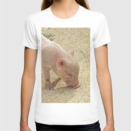 SmartMix Animal - Piglet T-shirt