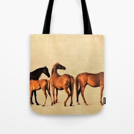 Classical Master Piece Circa 1762  Rockingham Mares and Foals by George Stubbs Tote Bag