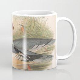 034 Goosander mergus castor4 Coffee Mug