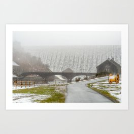 Elan Valley. Art Print