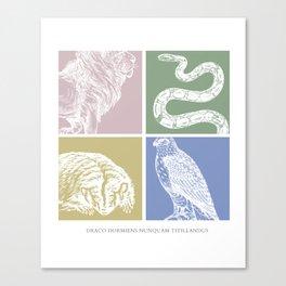 Draco dormien nunquam titillandus Canvas Print