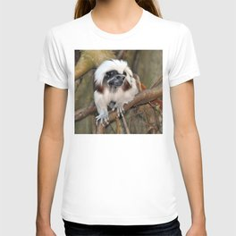 Cotton-top Tamarin T-shirt