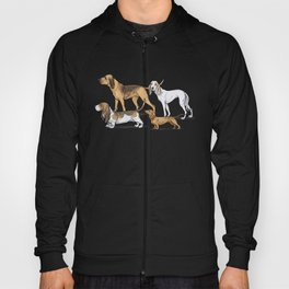 Nosy Scenthounds Hoody