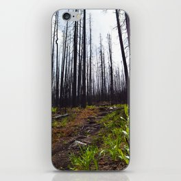 Excelsior Wildfire in the Maligne Valley, Jasper National Park, CA iPhone Skin