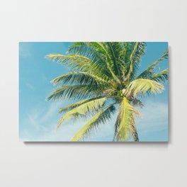 Hookipa Palm Dreams Metal Print
