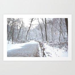 Snowfall at Brickworks on Christmas Day, 2020. LXXV Art Print