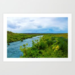 Flowers by the River Art Print