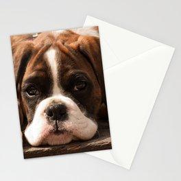 Alfie II Stationery Cards
