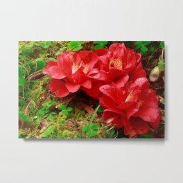 Fallen camellias Metal Print