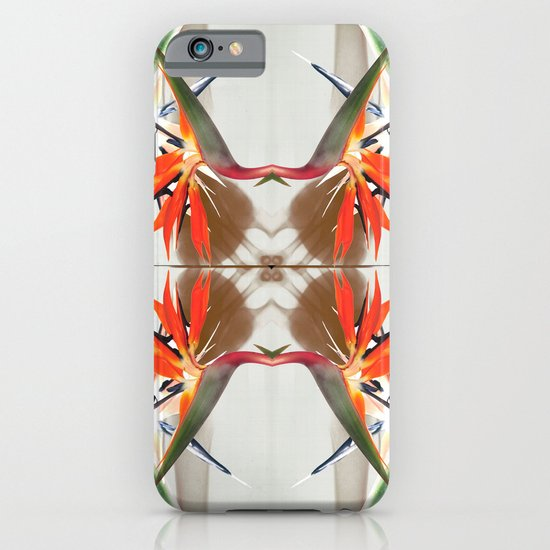 x-rays and mysterious Sterlizia iPhone & iPod Case