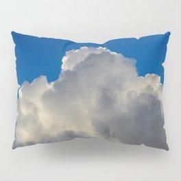 Wild Blue Yonder Pillow Sham
