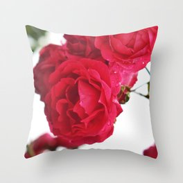 Chanson des roses Throw Pillow