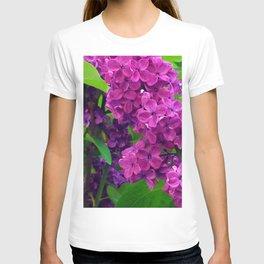 484 - Purple and Magenta Lilacs T-shirt