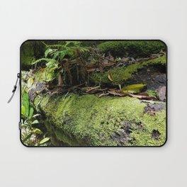 Rainforest Ferns & Moss Laptop Sleeve