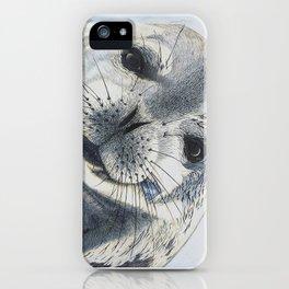Inquisitive Seal iPhone Case