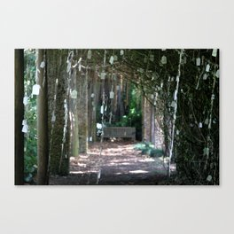 Wishing Grove Canvas Print
