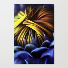 Concealed Copiousness Canvas Print