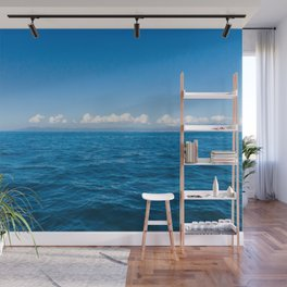 Fly Wall Mural