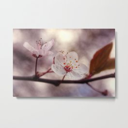 Beginning of Spring Metal Print