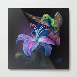 The Stargazer and The Hummingbird Metal Print