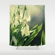 Snowdrops impression from the garden Shower Curtain