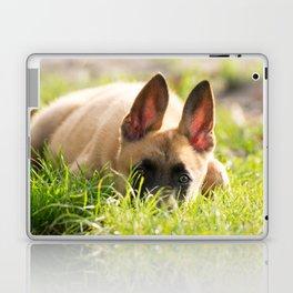 I'm not a fox but a Malinois puppy Laptop & iPad Skin