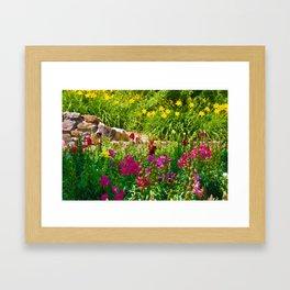 A colorful garden Framed Art Print
