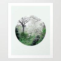 Forest Art Print