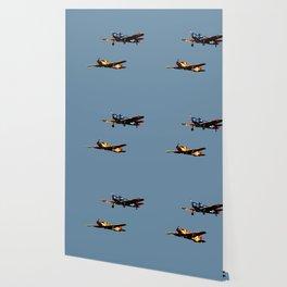 The Joy of Flight Wallpaper