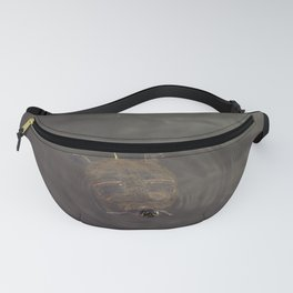 Hey Turtle Fanny Pack