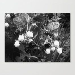 Duality at Work--Black and White Photography Prints Canvas Print
