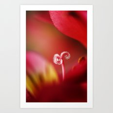 Ruby Sugar Cane Art Print