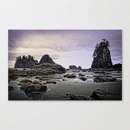 Second Beach-La Push, Washington Canvas Print