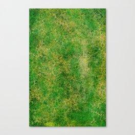 I Dieci Mondi (7.Apprendimento/Studio) Canvas Print
