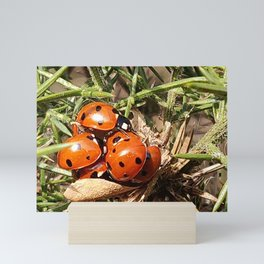 Ladybug's conference Mini Art Print