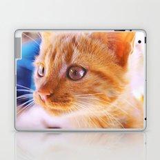 Orange cat Laptop & iPad Skin